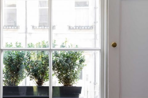 Sash window bars